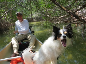 Leonard and Laia in the mangrove tunnel.