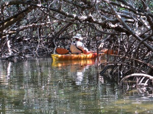 Our friend Mike in the mangrove tunnel.