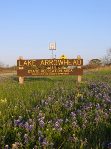Lake Arrowhead State Park
