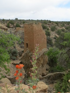 Amazing Tower built atop a rock in Holly Unit of Hovenweep