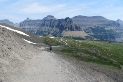 The trail back down to Logan Pass
