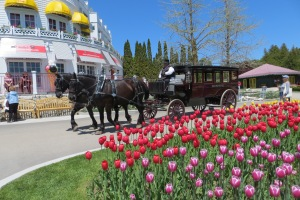 Stately carriage used to pick up guests of  Grand Hotel